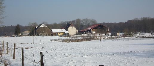 ferme-de-letang-fourchu-stampfli
